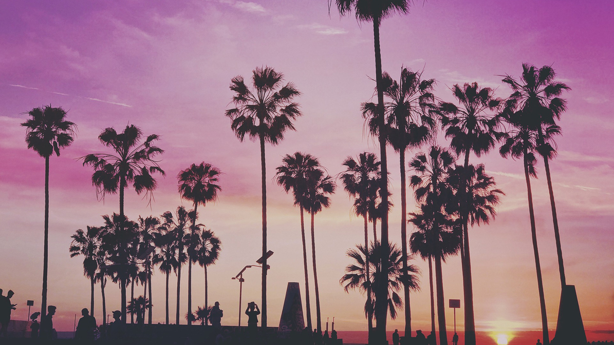 legally buy weed california purple sunset venice beach